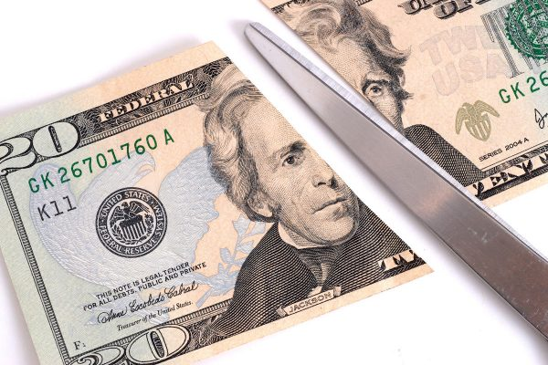 twenty dollar bill cut in half